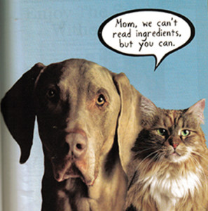 Onions and garlic are of the Allium family and are poisonous to both dogs and cats.