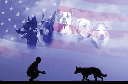 Calling to support and salute K-9 veterans and their work