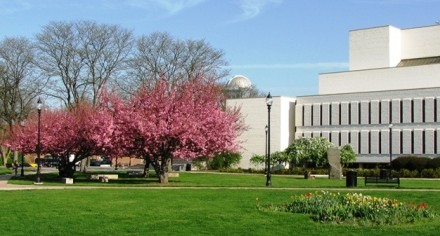 Widener relaxes library rules for residents