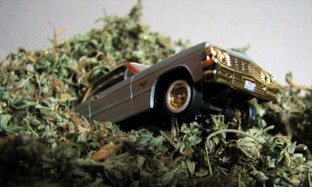 Weed Behind The Wheel