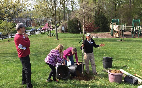 Marple celebrates Arbor and Earth days with new tree planting