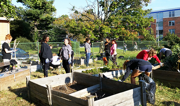 The PSU Brandywine women's soccer team installed vegetable garden beds and cleaned up the property at Stetser Elementary School in Chester.